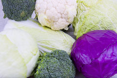 Types of shakes raw cabbage Stock Photo