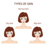 Types of skin. Oily, normal and dry. Royalty Free Stock Image