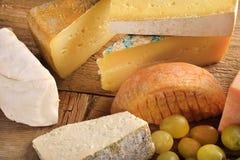 Types van kaas met druiven Royalty-vrije Stock Foto's