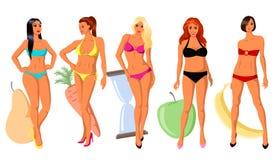 5 types van women& x27; s cijfer vector illustratie