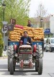 Types vendant des sacs de pommes de terre et d'oignons sur le tracteur Photo libre de droits