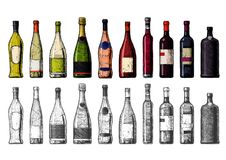 Types of Wine Bottles. Vector hand drawn illustration of Wine Bottles in vintage engraved style. Color and black-and-white versions Stock Images