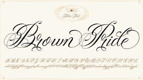 Typescript гордости Брайна Стоковая Фотография