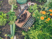Typewriter in Garden. A old rusty typewriter with flowers and vegetables growing around it Royalty Free Stock Image