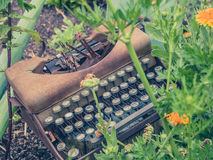 Typewriter in Garden. Rusty typewriter in garden with plants and vegetables Royalty Free Stock Photography