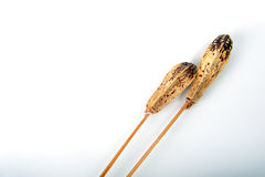 Typha on Sticks. Dried typha against white background. Two pieces of decor typha placed diagonally in horizontal photo with copy space in the left part of image Stock Image