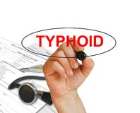 Typhoid. Writing word Typhoid with marker on whitebackground made in 2d software Royalty Free Stock Image