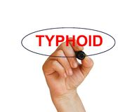 Typhoid. Writing word Typhoid with marker on whitebackground made in 2d software Royalty Free Stock Photography