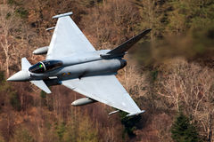 Typhone F2 eurofighter Stock Photos