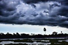 typhoon Fotos de Stock Royalty Free