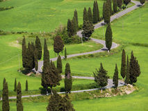 Typial view of road in Tuscany Royalty Free Stock Photography