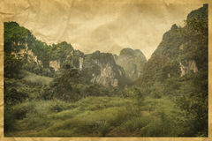 Typical African landscape and jungle Royalty Free Stock Photos