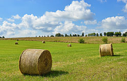 Typical agricultural landscape of Walloon Royalty Free Stock Images