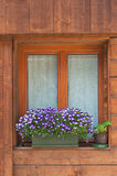 Alpine window. Typical alpine window, decorated with flowers Stock Images