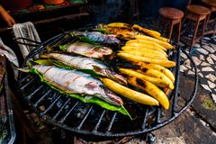 Typical Amazonian lunch made on the grill, with fish and bananas.  Stock Images