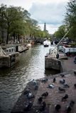 Typical Amsterdam canal and pigeons view. In the centre of the city Stock Photos