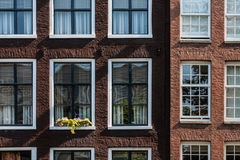 Typical Amsterdam house. Detail of a house with in Amsterdam in Netherlands Stock Photos