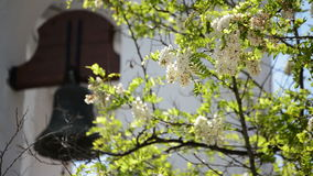 Typical andalusian bell tower with plants and flowers in a church a sunny day. Typical andalusian bell tower in a catholic church a sunny day stock video footage