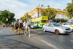 Typical Andalusian horses with carriages Stock Photo