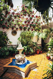 Typical Andalusian patio with fountain and numerous plants geran Royalty Free Stock Image
