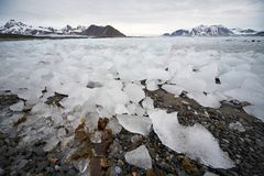 Typical Arctic landscape - ice, fjord, mountains Stock Photos