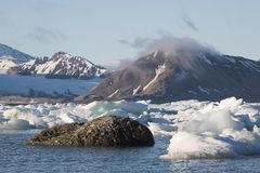 Typical Arctic landscape - sea, glacier, mountains royalty free stock photography