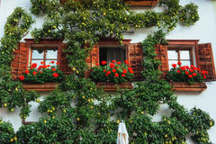 Typical Austrian Alpine house with bright flowers on the balcony. And trees, Hallstatt, Austria, Europe Stock Image