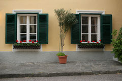 A typical austrian window with green louvered shuters and square paned windows with flowers in hanging flower pots Royalty Free Stock Photos