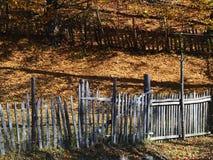 Autumn colours in Romania. Typical autumn colours at Doftana River Valley, Prahova County, Romania Royalty Free Stock Images
