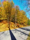 Autumn colours in Romania. Typical autumn colours on a road at Doftana River Valley, Prahova County, Romania Royalty Free Stock Photo
