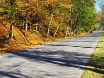 Autumn colours in Romania. Typical autumn colours on a road at Doftana River Valley, Prahova County, Romania Stock Photography