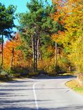Autumn colours in Romania. Typical autumn colours on a road at Doftana River Valley, Prahova County, Romania Royalty Free Stock Photography