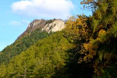 Mount Tampa. Typical landscape in the plains and forests of Transylvania, Romania, Autumn characteristic colors Royalty Free Stock Image