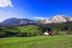 Typical basque country house in Axpe Royalty Free Stock Photos