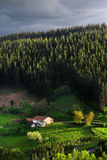 Typical basque country house Stock Photography