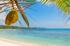 Typical beach on Mahe island, Seychelles Stock Image