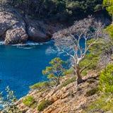 Typical beautiful Costa Brava coastline, Catalonia Royalty Free Stock Photos