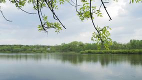Typical belorussian landscape. Typical belorussian nature in spring. Shot with slider stock footage