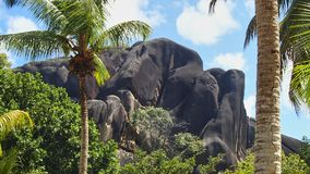 Typical black gray rock formations in the seychelles. Typical black gray rock formation behind green palms and plants and under cloudy blue sky on the seychelles Royalty Free Stock Photos