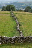 Typical British countryside with drywall. English countryside landscape, Yorkshire Dales, England, United Kingdom. Trees, grassy fields, drystone wall, shot on a Stock Photos