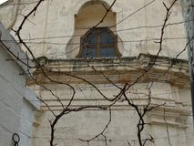 Typical building in Puglia, Southern Italy, seen through the trees royalty free stock photo