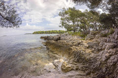 Typical cemented beach in Istria Royalty Free Stock Photos