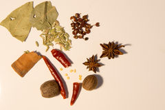Typical Chinese dried seasoning Stock Photos