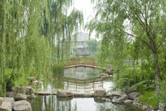 Typical chinese garden. With wooden arch bridge Royalty Free Stock Photo