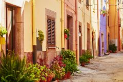 Colorful houses on a street of Bosa, Sardinia, Italy. Typical colorful Italian houses on a street of Bosa, Sardinia, Italy Royalty Free Stock Photography