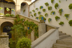 Typical Cordoba patio Royalty Free Stock Photo
