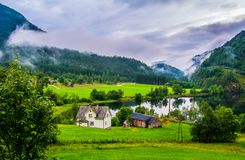 Typical countryside Norwegian landscape with houses on the shore stock image