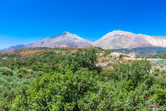 Typical Cretan landscape. Hills, olives and wind-power usage Royalty Free Stock Photography