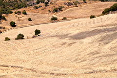 Typical Spanish landscape, Montecotro, Spain Royalty Free Stock Images