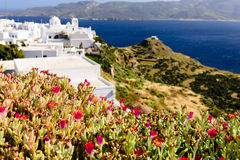 Typical Cycladic Architecture Royalty Free Stock Photo